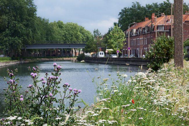 Lille - Bois Blanc Deule © Thomas Karges